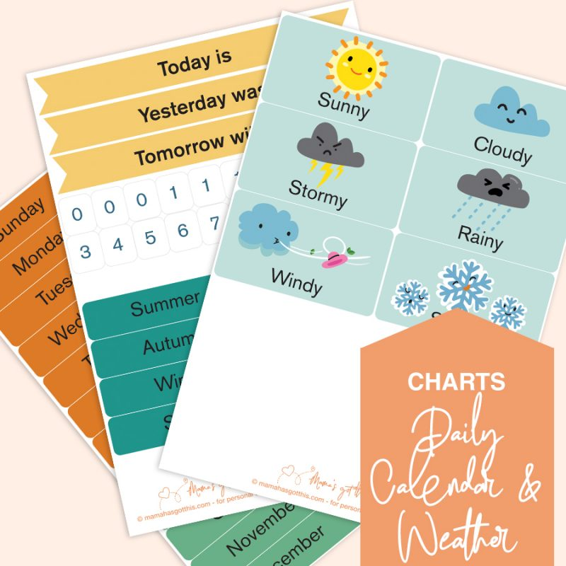 Printable Daily Calendar & Weather Chart